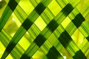 teixit herba bloc sostenibilitat